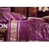 金香丽人-紫色