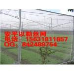 防虫网目数_防虫网规格_防虫网价格_防虫网安装_防虫网厂家