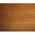 热带高级木材之通大海木