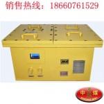DXBL1536/24X矿用隔爆型锂离子蓄电池电源