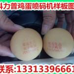 天津鸡蛋喷码机供应,小型鸡蛋打码机价格