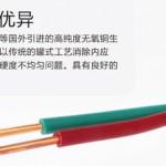 BV16平方电线 家用电线电缆 单芯BV16平方电线 电缆