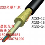 DSS-12B1-AT-100 ADSS-PE-24B1-600M陕西贵州宁夏ADSS光缆价格