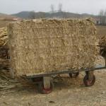 可以流动的玉米秸秆打包机(柴油机动力)